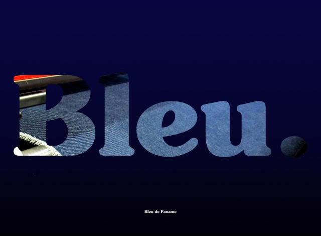 BLEU-SS13
